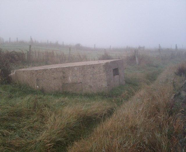 Pillbox east of South Fambridge