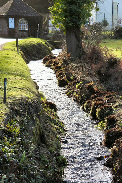 Stream in Holford Combe