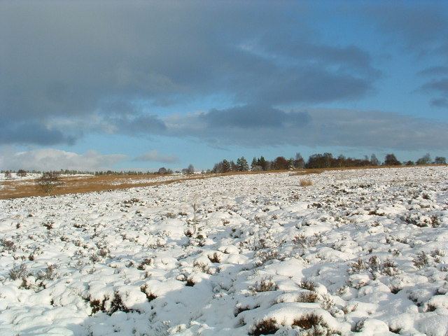 The moor above Knocknagore