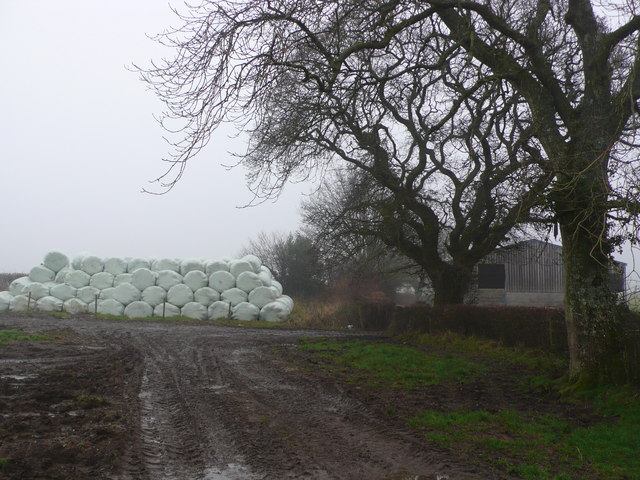 Barn with wrapped hay bales