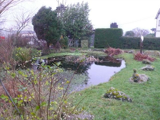 Pond at Home Farm, Weston, Dorset