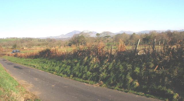 View east across the unclassified Gellidara road