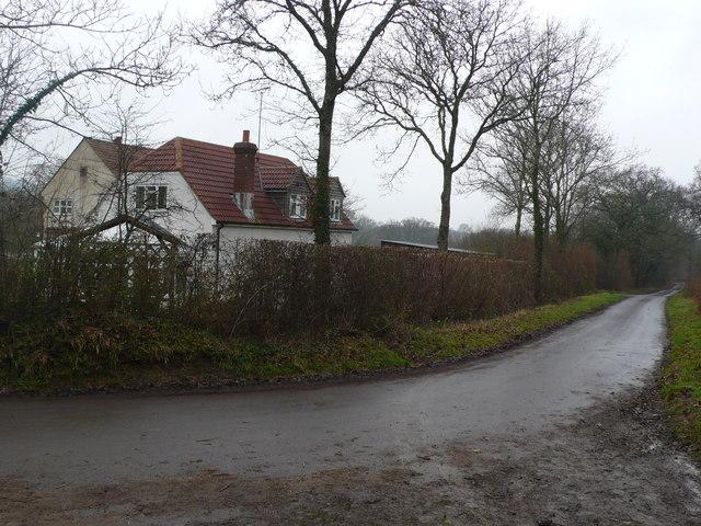 Ryewater Farm near Corscombe