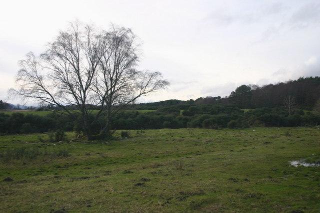 Clashmugach farmland