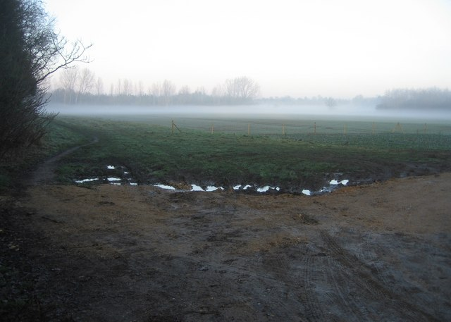 Mist & Mud