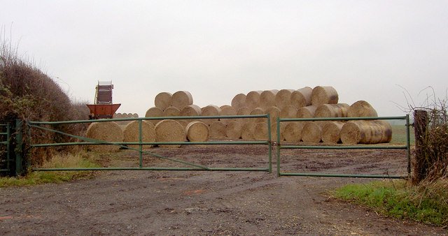 Gates and straw