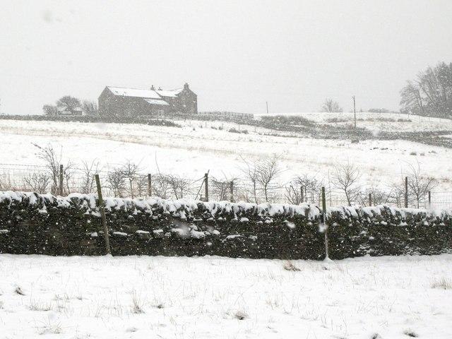 Finney Hill (2)