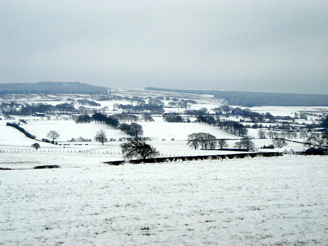 Snow Covered Fields Near East Kilbride