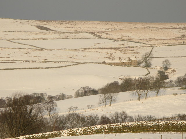 Pastures and moorland near Moor House (2)
