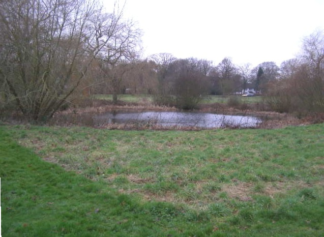 Pond near the cricket pitch