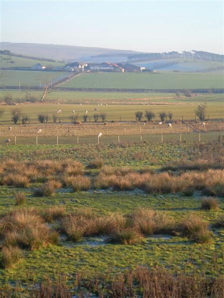 Towards Blairbowie Farm