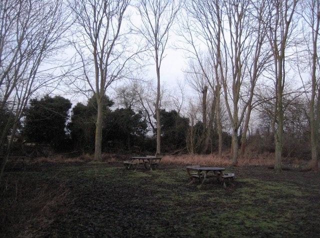 Winter picnic site