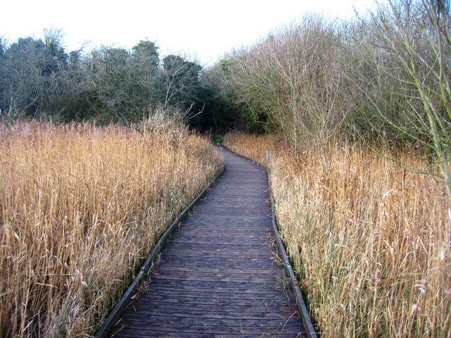 Fowlmere boardwalk