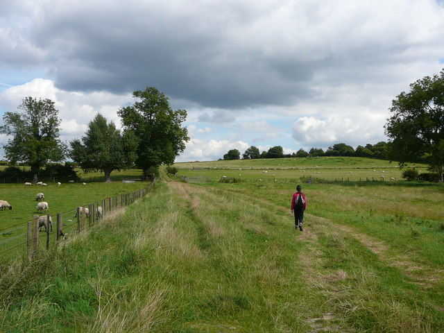 On the Aylesbury Ring Path at Butler's Cross