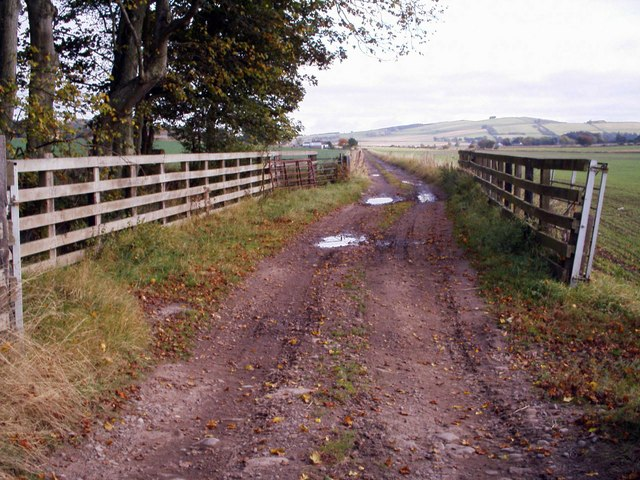 Track Leading to Hatton of Carse Farm from Forfar / Quilkoe Road