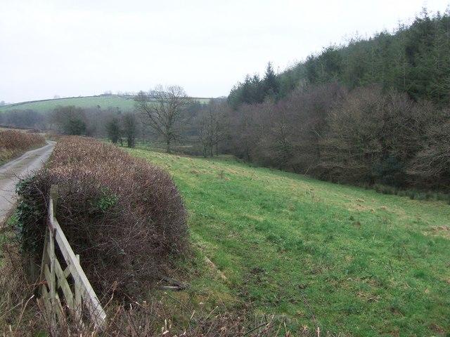 Valley beside Dodscott Wood