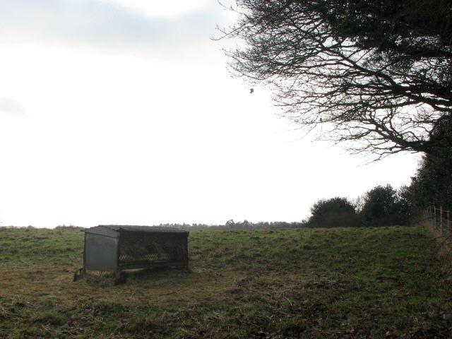 Empty sheep pasture