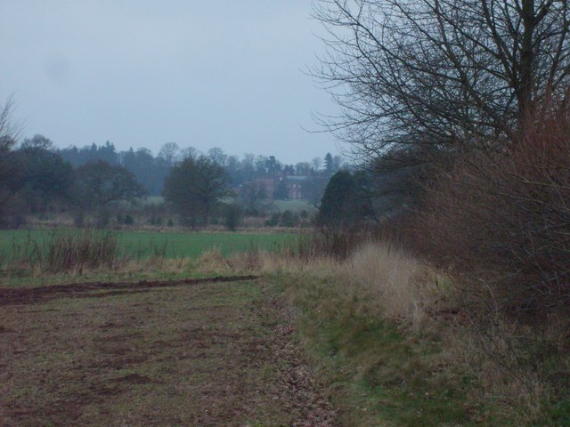 Chillington View