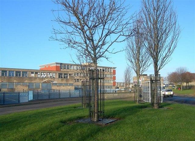 Mainholm Academy