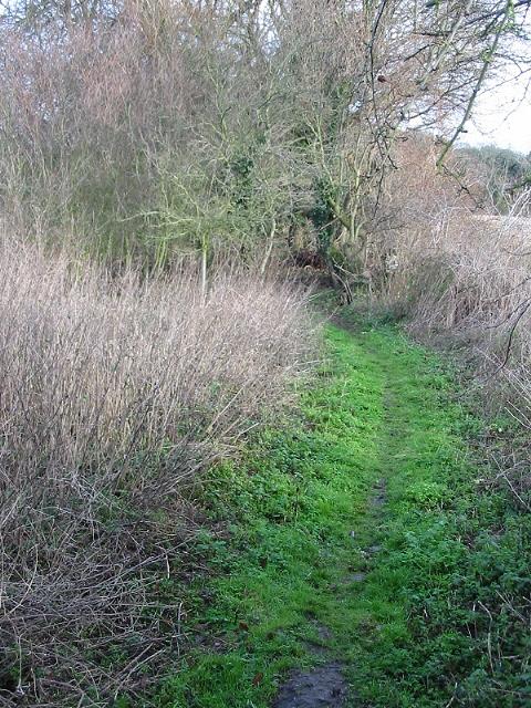 Footpath from Kelk Hill