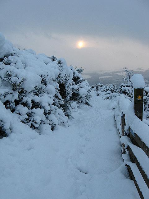 Winter walking on Blaikie's Hill