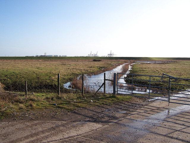 Stoke Marshes