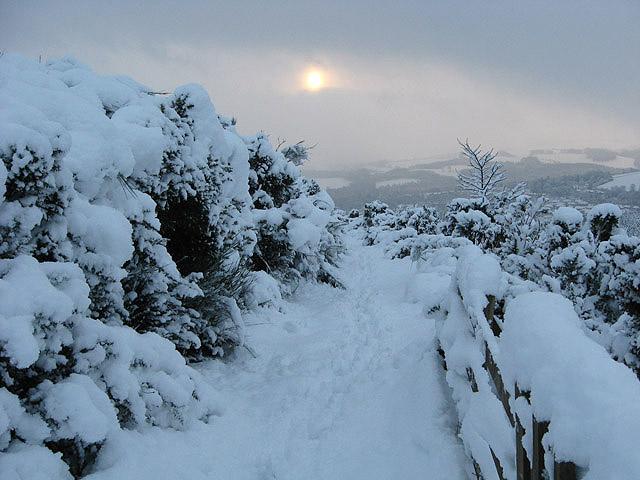 Blaikie's Hill in winter