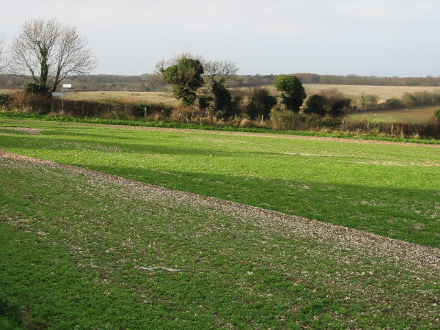 View W from Roman Way, Elvington