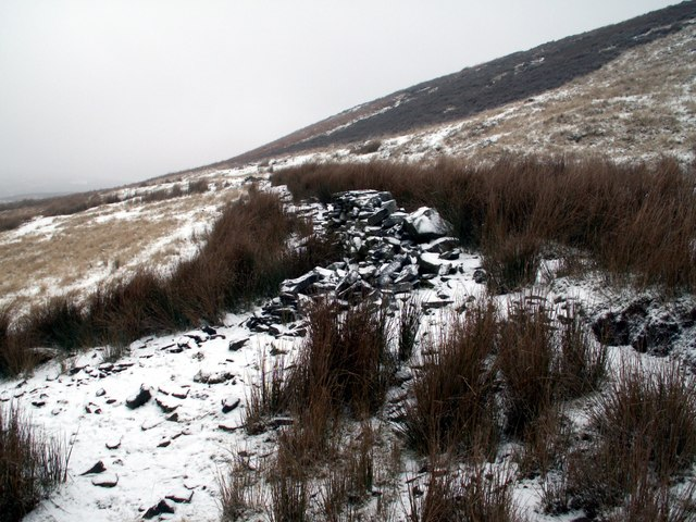 Remains of a wall between Hordron Bank and Upper Hordron