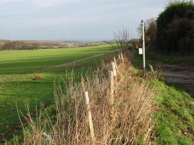 View NE from Roman Way, Elvington