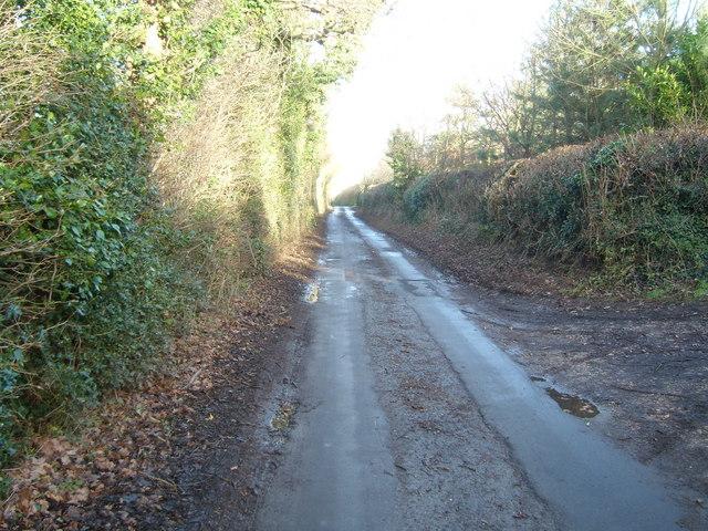 Greaves Lane