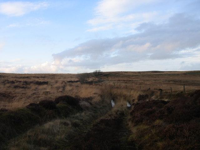 Llwybyr ger  Llyn Fanod / Footpath near Llyn Fanod