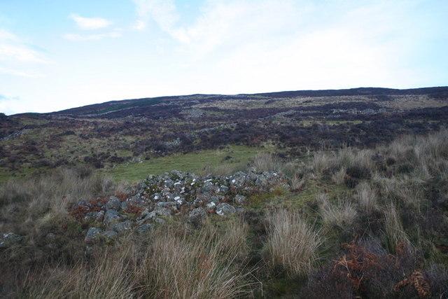 Flanks of Meall Eachainn