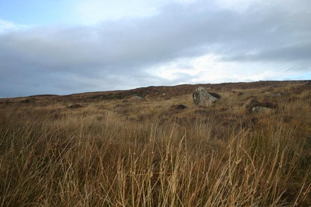 Moorland slope by Loch Laro