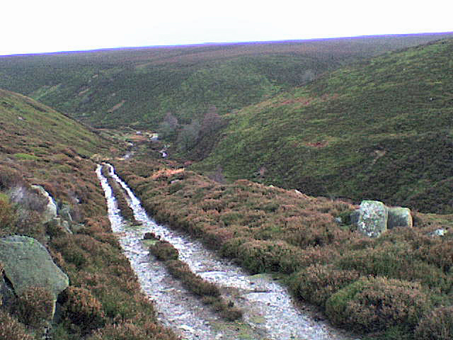 View down the valley of Long Gill towards upper Colsterdale