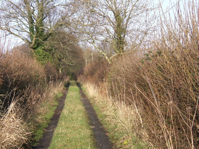 Access road from Bellevue Lane