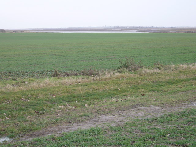 Farmland close to Hamford Water estuary