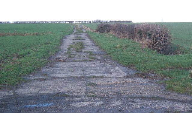 Track towards hedge on skyline