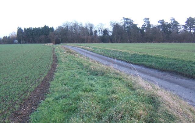 Mitchery Lane towards Manor Farm junction