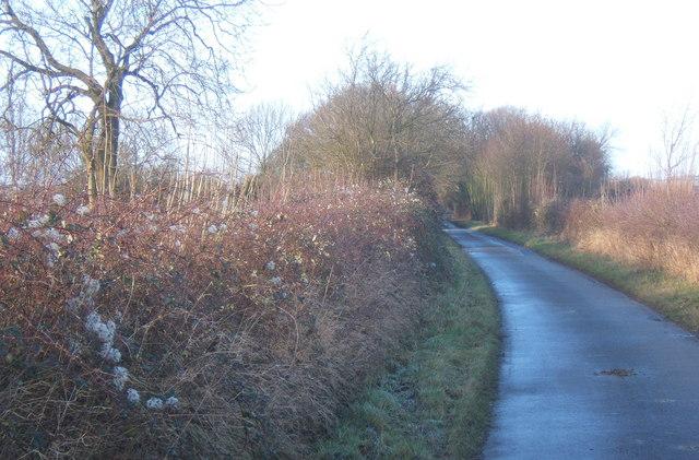 Mitchery Lane, looking north