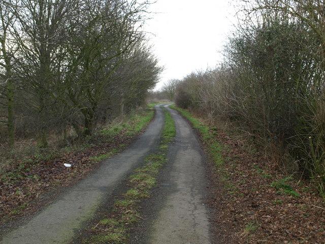 Bumpy Fen Road