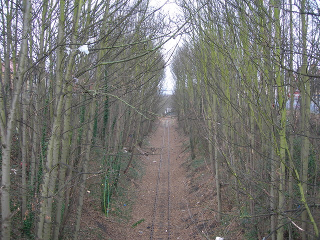 Railway Line, Gillingham (1)
