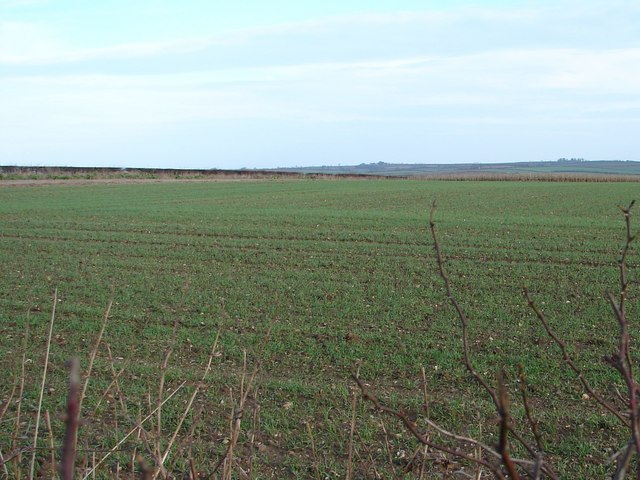 Field near Barr Farm
