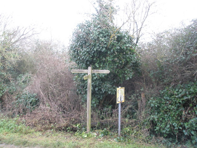 Junction of footpaths near Southbourne Fruit  Farm