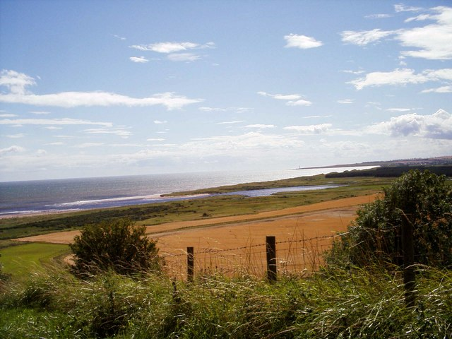 Panoramic view of east coast, north of Montrose