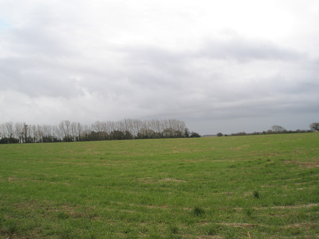 Field to the south of footpath between Southbourne and Nutbourne