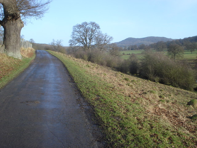 Roadway in Eastnor Park