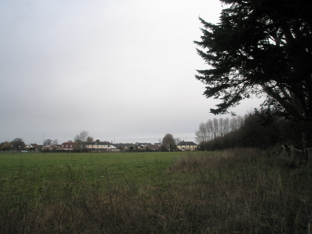 Looking northwards from footpath by orchard