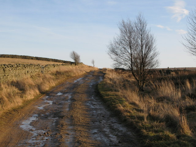 The track to Haggerstone Moss