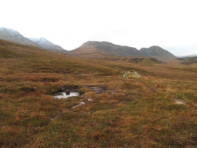 Upper Strathspey bogs